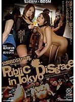 公開BDSM調教 推川悠里