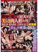 拷辱到昇天的美麗肉人形們 RED BABE 2周年記念總集編 -超棒的絶頂DNA-