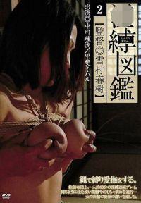 淫縛図鑑 2